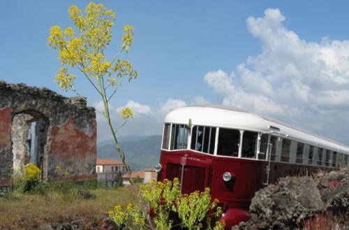 صور - رحلة مدهشة بالقطار لمشاهدة اجمل المناظر الطبيعية