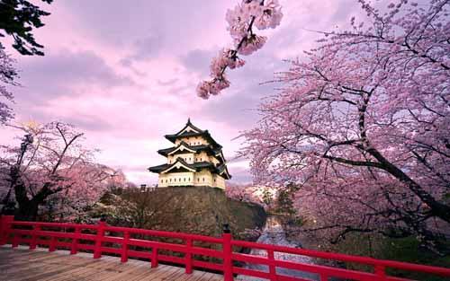 المناظر الطبيعية في اليابان