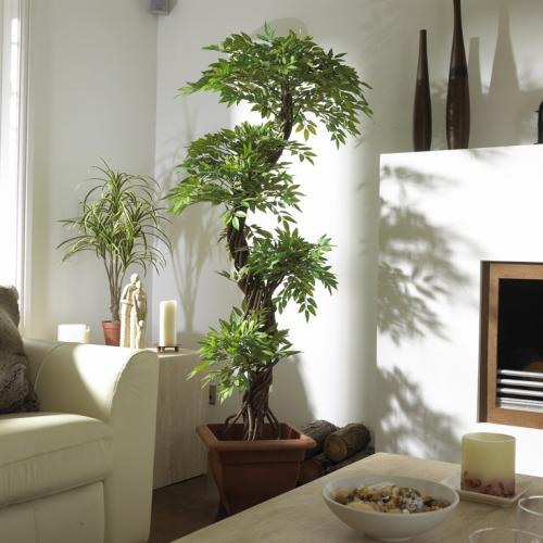 ديكورات مكاتب مودرن انيقة لغرف الدراسة: كيف تحافظ على نباتات الزينة على قيد الحياه فى منزلك