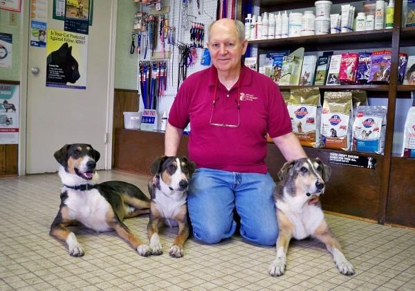 صور - رجل يدفع 100 الف دولار لاستنساخ كلبه المفضل
