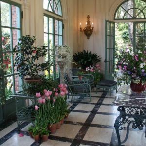 نصائح للحصول على حدائق منزلية داخلية جذابة
