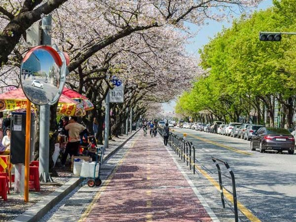 صور - ما هي عاصمة كوريا الجنوبية ؟