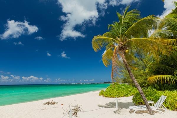 شواطئ دولة هندوراس