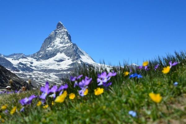 سويسرا من الدول الاكثر سعادة فى العالم